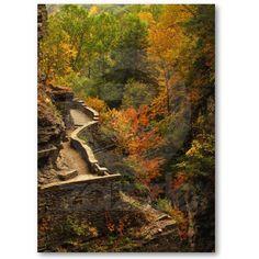 Autumn in Treman State Park