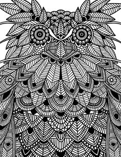 ANIMALS | Black series on Behance Owl close-up by Lara Mendes