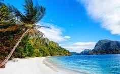beach, Philippines, islands, palm trees, sand, ocean