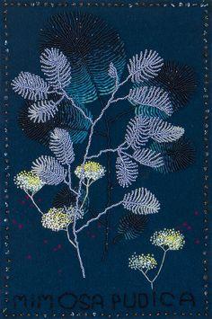 Maija Fiebig, 'Mimosa Pudica,' G. Sensitive Plant, Bedroom Art, Stitching, Artsy, Wool, Create, Gallery, Artwork, Projects