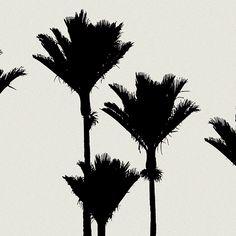 Fine Art Prints » Peter Latham Photography