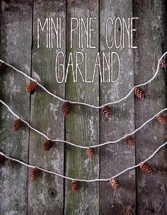 mini pine cone garla