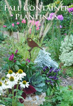 Cheap and simple updates to make your container plantings look great through the fall. Plus plenty of inspiration for making a really beautiful fall container planting from scratch. Fall Container Plants, Fall Containers, Container Flowers, Container Gardening, Plastic Hanging Baskets, Cactus Light, Glass Centerpieces, Cold Frame, How To Preserve Flowers