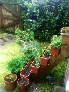 Herbs planter boxes