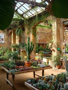 This morning i went to paradise plants hivernacle garden center barcelona the plant journal garden center displays garden garden shop garden room flower shop floral sh center displays floral flower garden room shop Garden Shop, Dream Garden, Home And Garden, Home Garden Design, Greenhouse Plans, Greenhouse Gardening, Greenhouse House, Greenhouse Wedding, Greenhouse Film