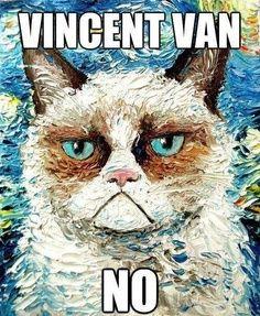 Grumpy Van Cat