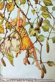 Image result for cicely barker flower month fairies