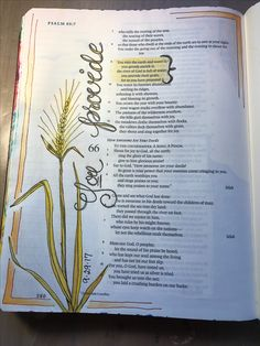 Psalm 65:9. He provides. Sherrie Bronniman - Art Journaling: In My Bible