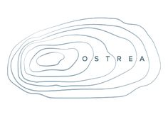 Ostrea Logo Concept 2  #ostrea #logo #oysters #muscles #fluid #ocean…