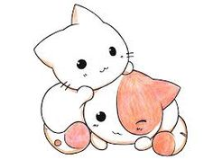 Image result for kawaii cats