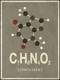 Chocolate doesn't ask silly questions- chocolate understands! Lovely yet scientific poster <3