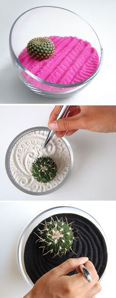 Relajante y refrescante, un cactus combinado con mini jardín zen.