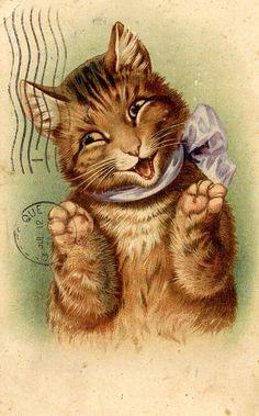 1909 Smiling Cat Postcard