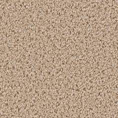Dream Weaver Style 3022 Marquis In Quartz Capell Flooring