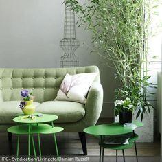Der Raum wirkt mit den organisch geformten kleinen Couchtischen in Grün, dem Bambus als Zimmerpflanze und dem gebeizten Holzboden sehr natürlich und strahlt Ruhe aus. - mehr Ideen auf www.roomido.com