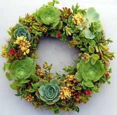 Succulent Wreath Fairy Smile 14""