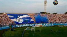 TFA - Londrina Esporte Clube