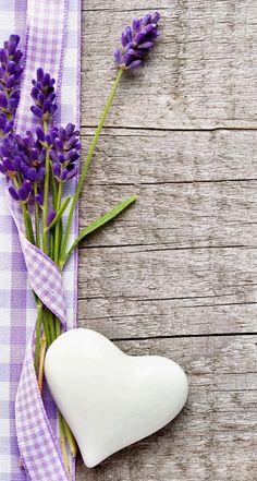 Обои wallpaper iPhone lavender