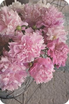 Love these peonies!