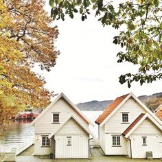 W&D Goes to Scandinavia: A Guide To Getting Lost in Norway | { wit + delight } | Bloglovin'