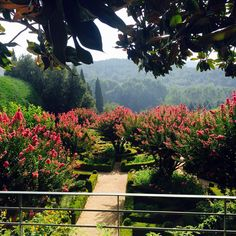 Gardens of Portugal   FineGardening