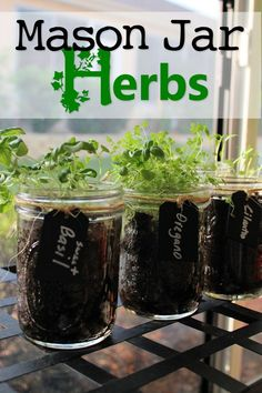 Mason Jar Herbs - I love cooking with herbs and have the best place to grow them and keep a fresh supply all year long. And growing them in Ma…