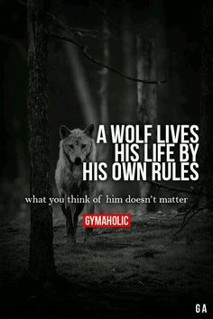 A WOLF LIVES HIS LIFE Friendship Quotes, Life Quotes, , Tattoos, Beautiful Places. Source by anapdiazm The post A wolf lives his life Friendship Quotes appeared first on Quotes Pin. Great Quotes, Quotes To Live By, Me Quotes, Motivational Quotes, Inspirational Quotes, Quotes Images, Super Quotes, Warrior Quotes, Gym Quote