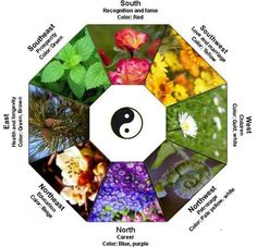 The Ultimate Magic Garden - Feng Shui in Every Corner of Your Garden
