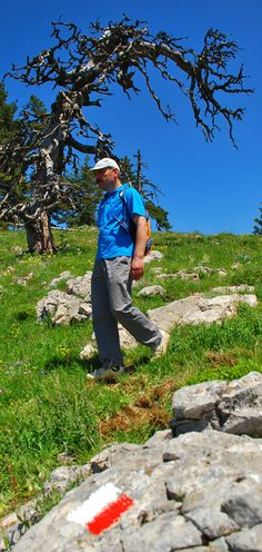 Yenice Forest Trail, Turkey
