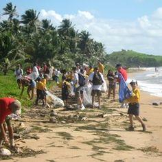 Actividad de Limpieza de Playas en Palmas de Mar Puerto Rico