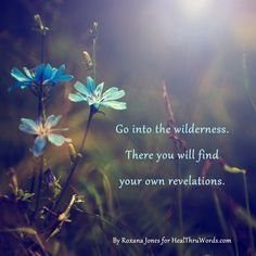 Go into the wilderness. There you will find your own revelations.  ~ Roxana Jones