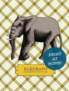 Buy, print and hang! Easy and unique elephant illustration art print.