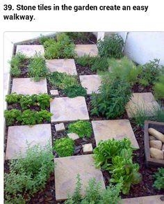 Checkerboard garden idea