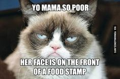 Yo Mama so poor, her face is on the front of a food stamp - Yo ...