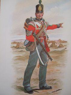 Stadden: SGT LIGHT COMPANY 7TH ROYAL FUSILIER REGT OF FOOT 1814