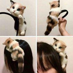 Simulation Cats Doll Party Hair Band Headband Hoop Women Party Hair Accessory | eBay Softies, Cat Headband, Black Pink, Hair Hoops, Kawaii Cat, Lolita, Cat Doll, Glamour, Hair Accessories For Women