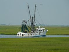 The Lowcountry!  Beaufort, SC  (notice the dolphin in front of the boat)