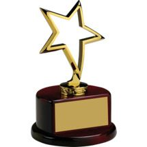 """4 x 6 1/2"""" Outlined Metal Star Trophy"""
