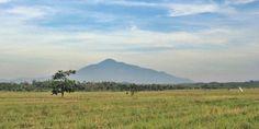 Gunung Tampomas, Sebuah Keindahan di Kabupaten Sumedang