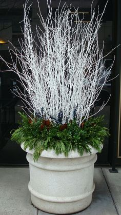 35 Festive Outdoor Holiday Planter Ideas To Decorate Your Front Porch For Christmas Winter White Branches With Evergreens Christmas Urns, Outdoor Christmas Decorations, Winter Christmas, Winter Holidays, Christmas Home, Christmas Wreaths, Christmas Crafts, Winter Porch, Contemporary Christmas Decorations