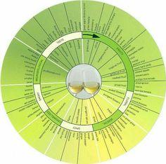 White wine flavor chart