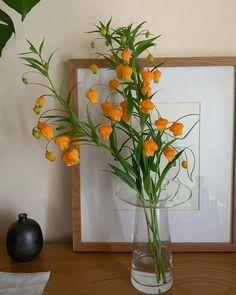 Home Decoration Ideas Indian .Home Decoration Ideas Indian Orange Aesthetic, Flower Aesthetic, Passion Deco, My Flower, Cheap Home Decor, Decoration, Room Inspiration, Interior And Exterior, Interior Design