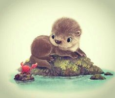 A little otter fresh from a bath! This little guy is just one of many cuddly and not-so-cuddly creatures. Very cute, with little crab friend Cute Animal Drawings, Kawaii Drawings, Adorable Drawings, Hair Drawings, Drawing Animals, Baby Animals, Cute Animals, Baby Giraffes, Cute Cartoon Animals