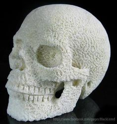 Carved out of some kind of shell
