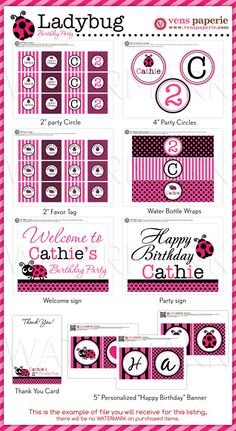 Pink Lady Bug Birthday Party Package Personalized FULL