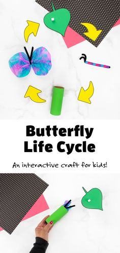 This easy butterfly life cycle craft is the perfect interactive craft for preschool and kindergarten! #butterflylifecycle #preschool #easy #butterflylifecycle3D Stages Of A Butterfly, Butterfly Life Cycle, Creative Activities For Kids, Easy Crafts For Kids, Learning Resources, Fun Learning, Life Cycle Craft, Lego Design, Indoor Play