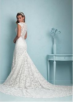 Elegant Lace & Tulle V-neck Neckline Natural Waistline Sheath Wedding Dress