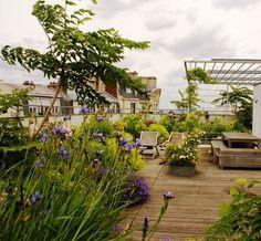 Des fleurs à profusion pour cette grande terrasse, par Xavier de Chirac (la photo, 2) Rooftop Terrace, Terrace Garden, Rooftop Gardens, Pergola Plans, Diy Pergola, Cheap Pergola, Ideas Terraza, Tower Apartment, Shade House