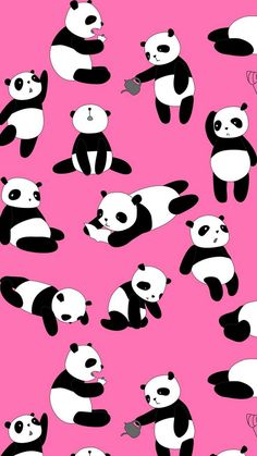 Cute Panda Pink iPhone Wallpaper - Best iPhone Wallpaper