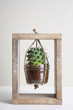 Macetero para cactus /Cactus Planter Tutorial